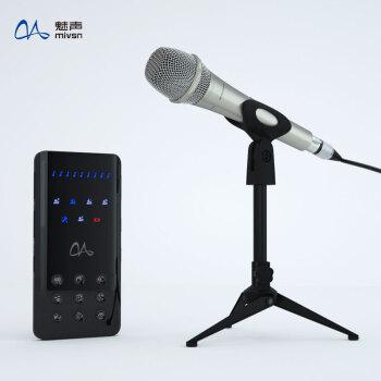 魅音Y 1-M 300携帯電話専用K歌喚声カードセットのクイック生放送録音マスクデバイス全セット